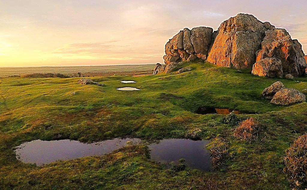 dawn on plumstone rocks pembrokeshire in November