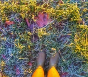 frosty-feet-01.jpeg.jpg