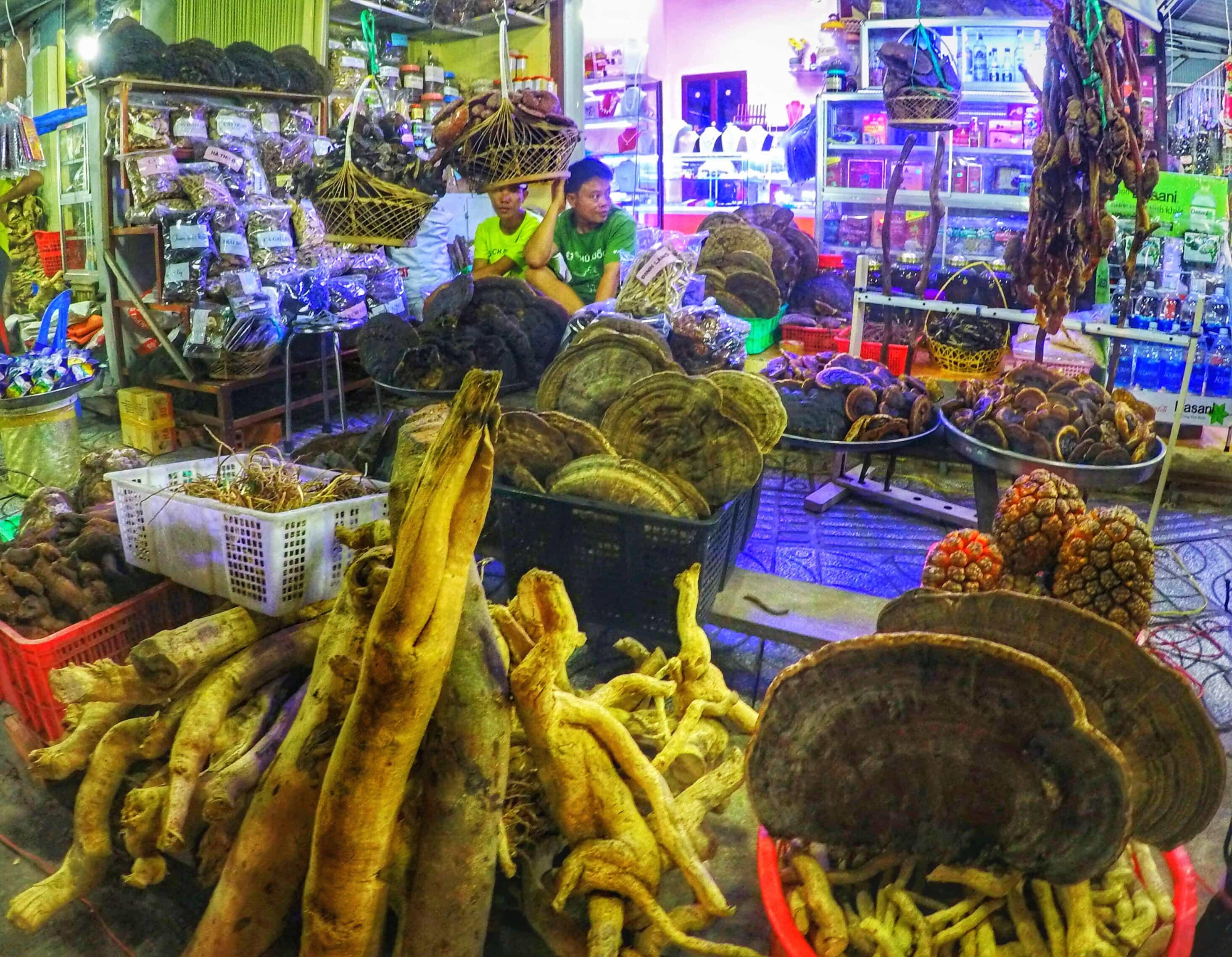 medicine store vietnam market