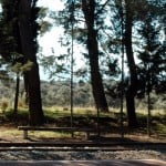 Rustic seats under the pines at Camlik station