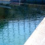 2 frozen pool 2012