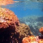 Kamil Cavern Shallow water