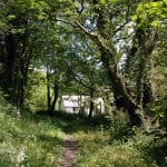 home along the bridle path May