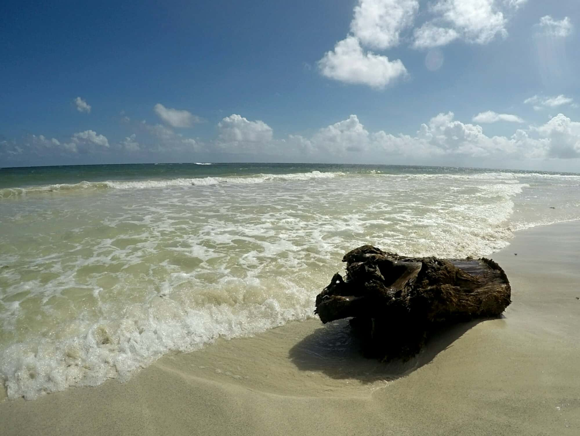log and sand